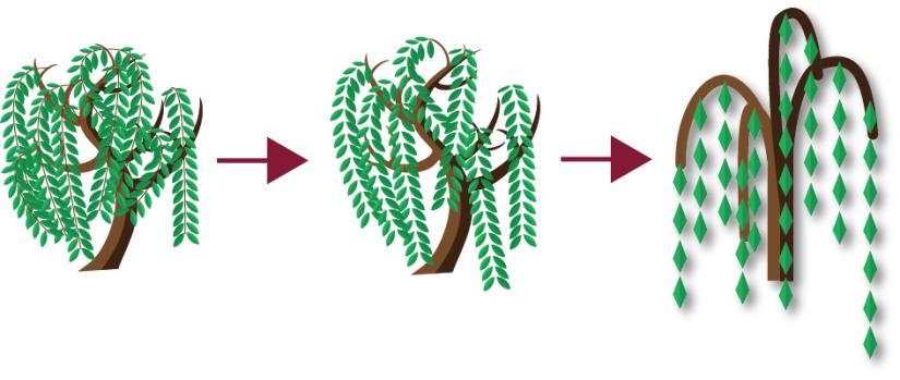 tree-style-progression